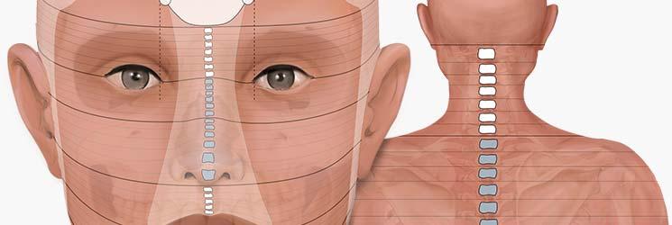 fomration en réflexothérpie et réflexologie